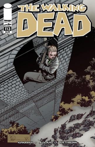 The-Walking-Dead_113-666x1024