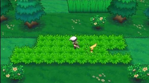 Pokemon-ORAS-Sneak